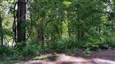 Asheville Residential Lots & Land For Sale: 143 Laurel Loop #2