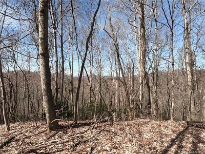 Buncombe County, Haywood County, Henderson County, Madison County Residential Lots & Land For Sale: 19 +/- Acres Homers Lane