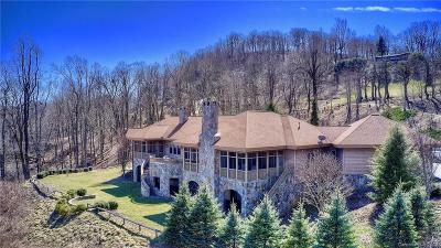 Single Family Home For Sale: 614 Rich Knob Road