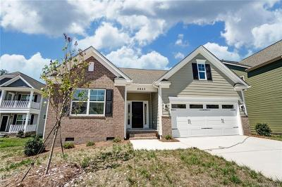 Kannapolis Single Family Home For Sale: 2623 Keady Mill Loop #Lot 157