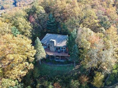 Buncombe County, Haywood County, Henderson County, Madison County Single Family Home For Sale: 250 Holland Drive
