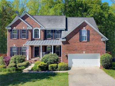 Fort Mill Single Family Home For Sale: 347 Lorraine Road