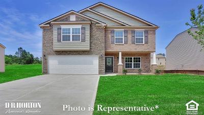 Charlotte Single Family Home For Sale: 9915 Pollie Little Lane #35