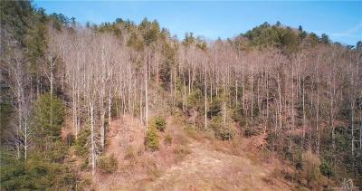 Buncombe County, Haywood County, Henderson County, Madison County Residential Lots & Land For Sale: 7530 Nc 208 Highway