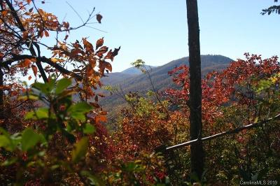 Buncombe County, Haywood County, Henderson County, Madison County Residential Lots & Land For Sale: 9999 High Cliffs Trail #3