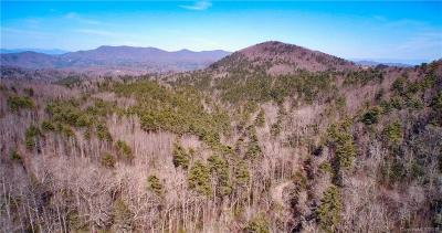 Buncombe County, Haywood County, Henderson County, Madison County Residential Lots & Land For Sale: Doe Branch Road