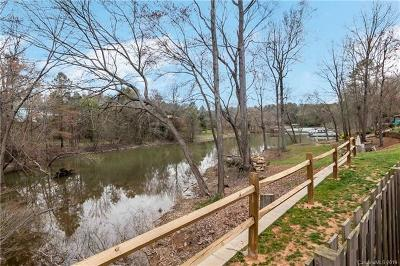 Lake Wylie Condo/Townhouse For Auction: 4136 Charlotte Highway #C
