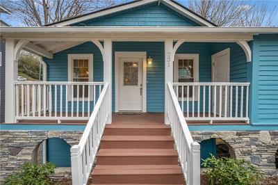 Asheville Single Family Home For Sale: 231 Short Flint Street