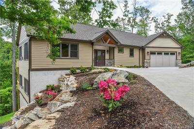 Buncombe County, Haywood County, Henderson County, Madison County Single Family Home For Sale: 14 Herron View Lane #14
