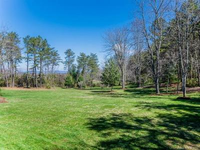 Weaverville Single Family Home For Sale: 44 Boyds Chapel Road
