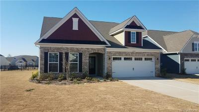 Lake Wylie Single Family Home Under Contract-Show: 6016 Cicada Circle