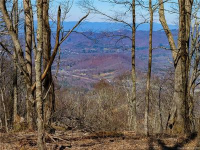 Buncombe County Residential Lots & Land For Sale: 99999 Fairview Forest Drive #1