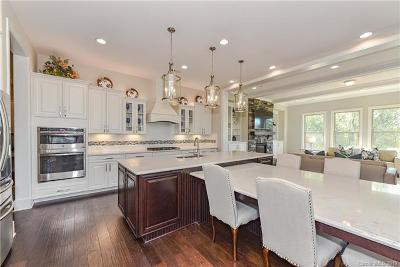 Fort Mill, Rock Hill Single Family Home For Sale: 2251 Brandybuck Court