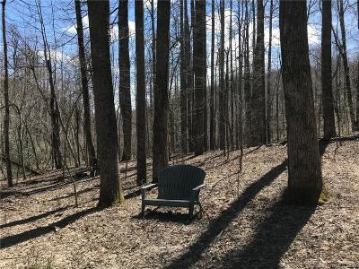 Buncombe County, Haywood County, Henderson County, Madison County Residential Lots & Land For Sale: 99999 High Rock Acres Drive