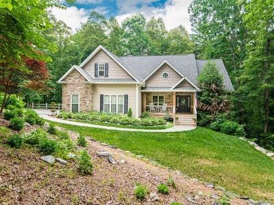 Asheville Single Family Home For Sale: 15 Gaston Mountain Road