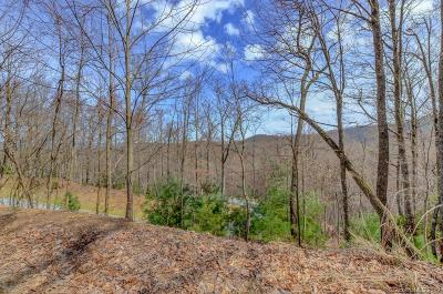 Henderson County Residential Lots & Land For Sale: Mills River Way #53R
