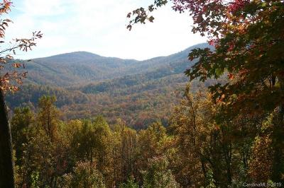 Buncombe County, Haywood County, Henderson County, Madison County Residential Lots & Land For Sale: 20 High Cliffs Trail #33