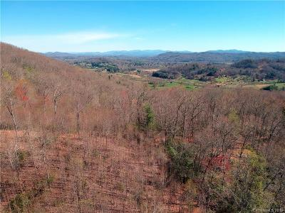 Buncombe County, Haywood County, Henderson County, Madison County Residential Lots & Land For Sale: 99999 Pleasant Grove Church Road