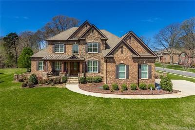 Matthews, Weddington Single Family Home For Sale: 1269 Delaney Drive