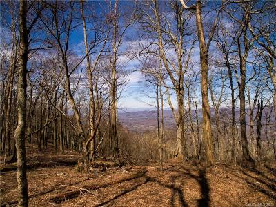 Buncombe County Residential Lots & Land For Sale: 99999 Fairview Forest Drive #2