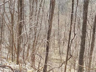 Buncombe County, Haywood County, Henderson County, Madison County Residential Lots & Land For Sale: Norton Drive