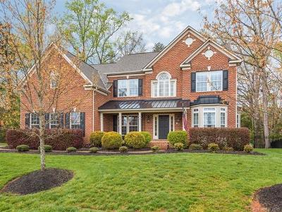 Lake Wylie Single Family Home For Sale: 217 Squirrel Lane