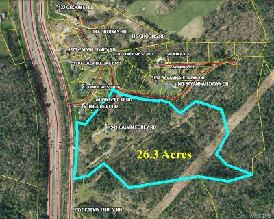 Buncombe County, Haywood County, Henderson County, Madison County Residential Lots & Land For Sale: 1949 Calvin Edney Road