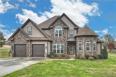 Mooresville Single Family Home For Sale: 103 Webbed Foot Road