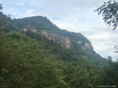 Chimney Rock Residential Lots & Land For Sale: Hickory Trail #9
