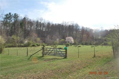 McDowell County Single Family Home For Sale: 102 Goose Creek Road