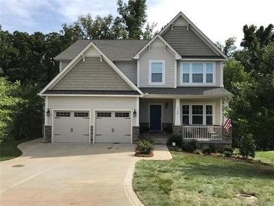 Fort Mill Single Family Home For Sale: 1332 Hahn Court