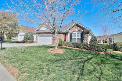 Fort Mill Single Family Home For Sale: 1023 Platinum Drive