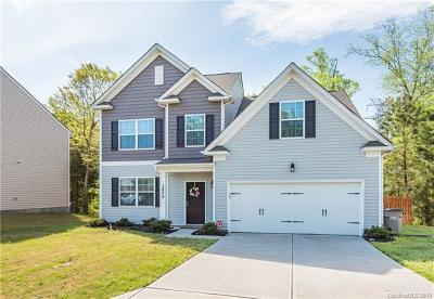 Gaston County Single Family Home For Sale: 3808 Schenley Avenue