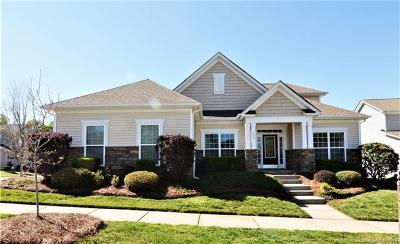 Fort Mill Single Family Home Under Contract-Show: 405 Harrington Court