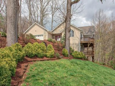 Waynesville Single Family Home For Sale: 260 Plott Valley Road