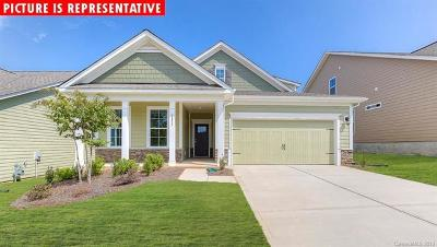 Cabarrus County Single Family Home For Sale: 5901 Redwood Pine Road