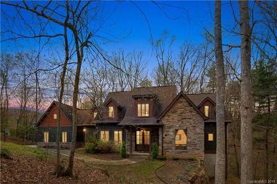 Buncombe County, Haywood County, Henderson County, Madison County Single Family Home For Sale: 90 Ashley Woods Drive