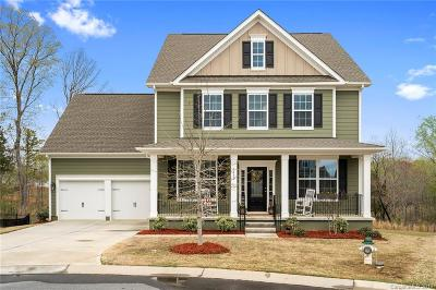 Fort Mill Single Family Home For Sale: 1373 Corey Cabin Court
