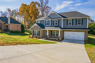 Statesville Single Family Home For Sale: 189 Hunters Hill Drive #2101