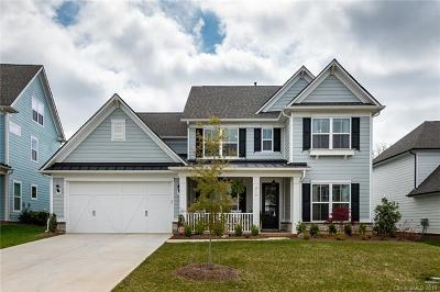 Fort Mill Single Family Home For Sale: 216 Hampton Trail Drive