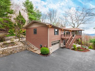 Mills River Single Family Home For Sale: 20 Wild Cherry Drive