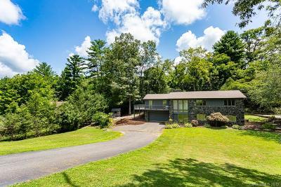 Weaverville Single Family Home For Sale: 37 Salem Acres Road