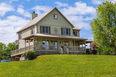 Mills River Single Family Home For Sale: 113 Belle Vernon Lane