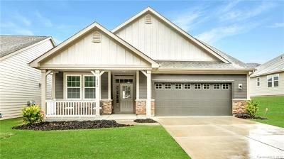 Charlotte Single Family Home For Sale: 18204 McKee Road