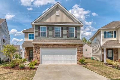 Fort Mill Single Family Home For Sale: 2017 Ice Lake Court