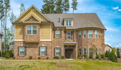 Huntersville Single Family Home For Sale: 13410 Crystal Springs Drive