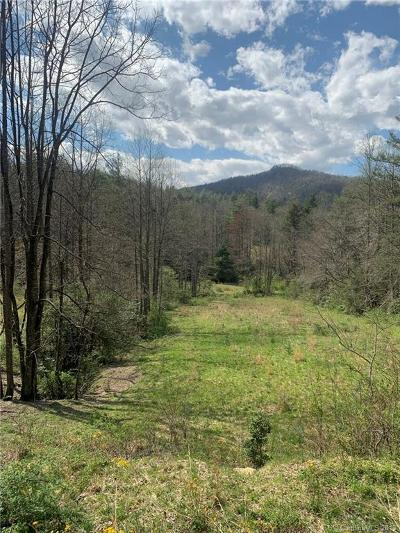Buncombe County, Haywood County, Henderson County, Madison County Residential Lots & Land For Sale: Lot 1 Bobs Creek Road #1