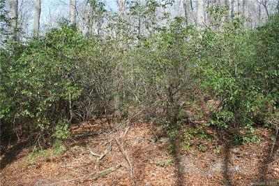 Buncombe County Residential Lots & Land For Sale: 999 Nc 9 Highway