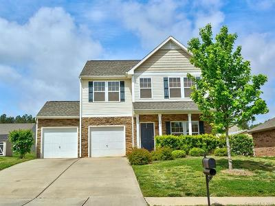 Statesville Single Family Home For Sale: 143 Water Ski Drive