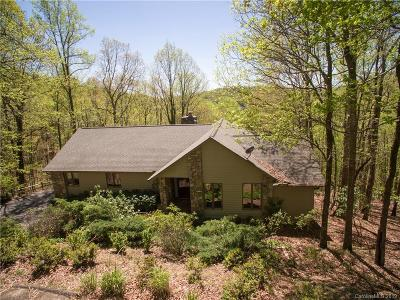 Mills River Single Family Home For Sale: 82 Sugar Maple Drive